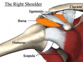 shoulderimpingem